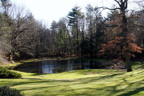 16 Albion Rd, Wellesley Included A Rare Back Yard Pond.